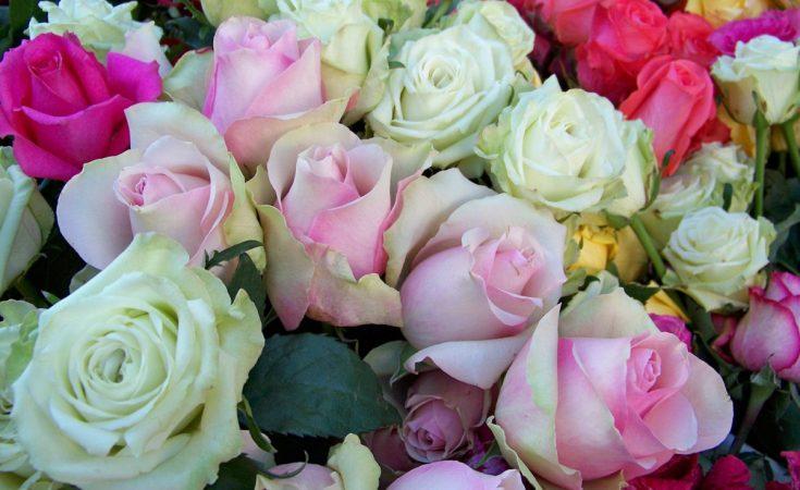 Consejos para crear arte floral
